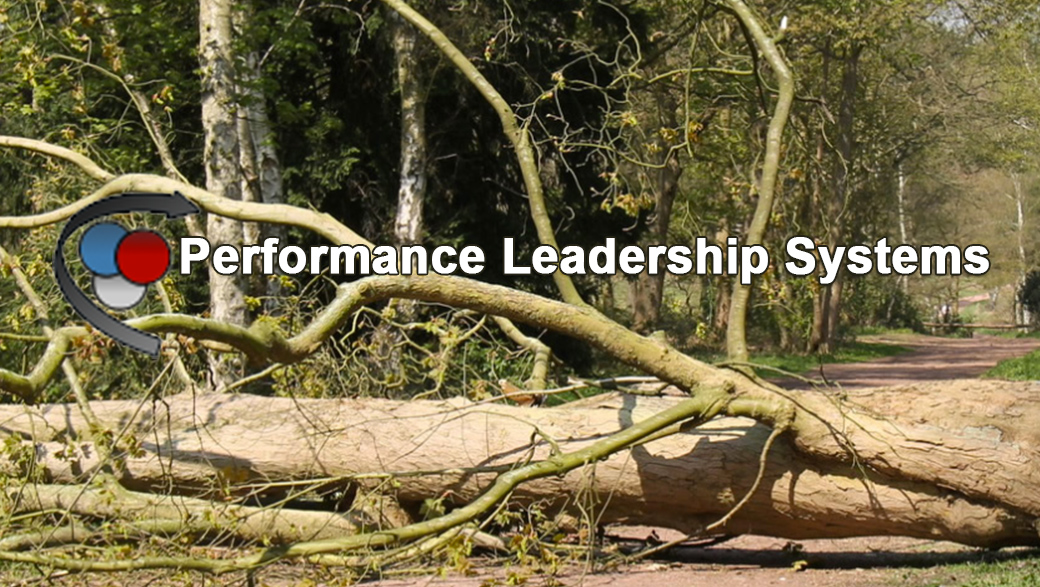 Performance Leadership Systems